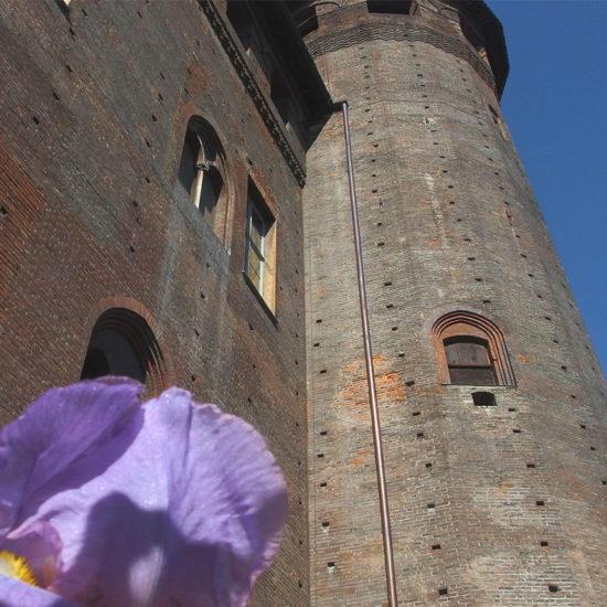 Tour Torino medievale